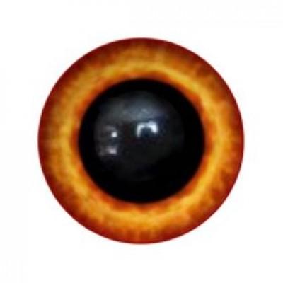 Глазки  10 мм,на ножке
